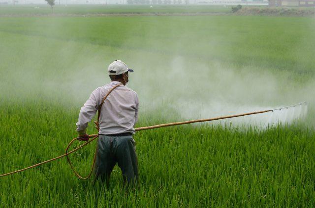 Les pesticides sont-ils un danger pour l'environnement ?